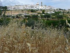 Bild der Stadt